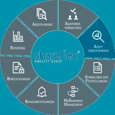 Abbildung Shareflex Quality Audit Auditdurchführung