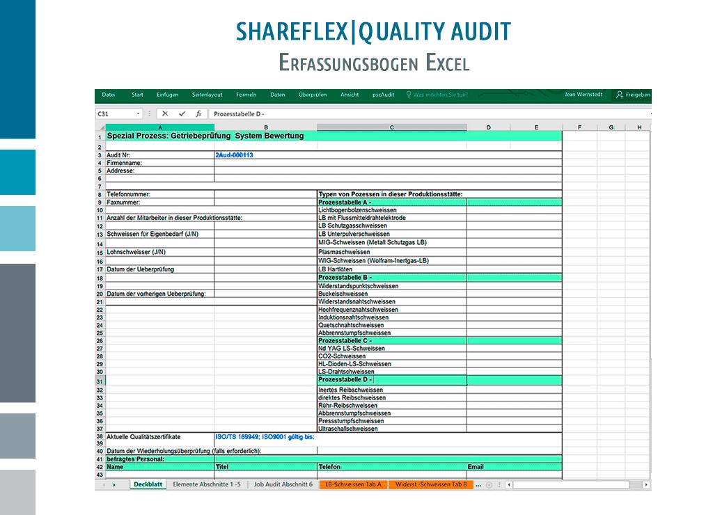 Screenshot des Excel-Erfassungsbogens für Shareflex Quality Audit