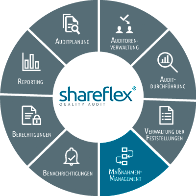 Abbildung Shareflex Quality Audit Maßnahmenmanagement