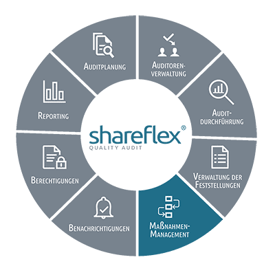 Informationen zum Maßnahmenmanagement in Shareflex Quality Audit
