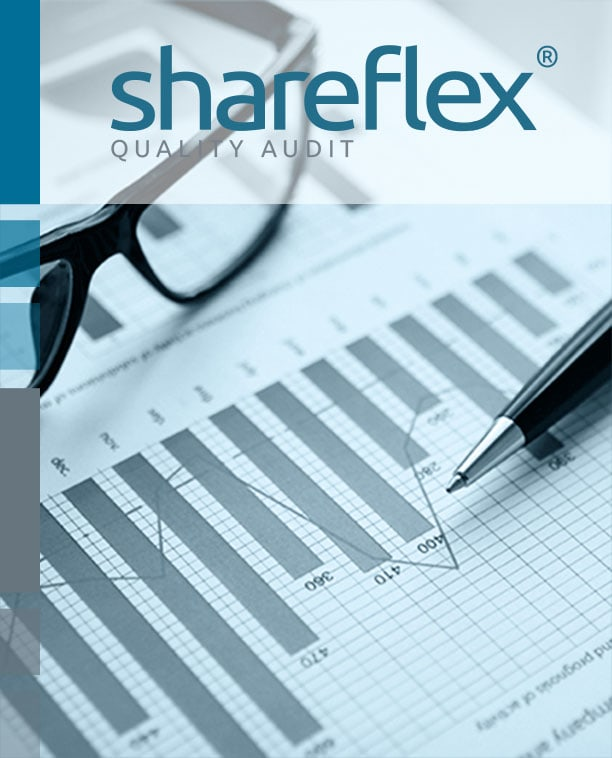 Diagram with business data serving as header for Shareflex Quality Audit, the audit management software for SharePoint and Microsoft Office 365