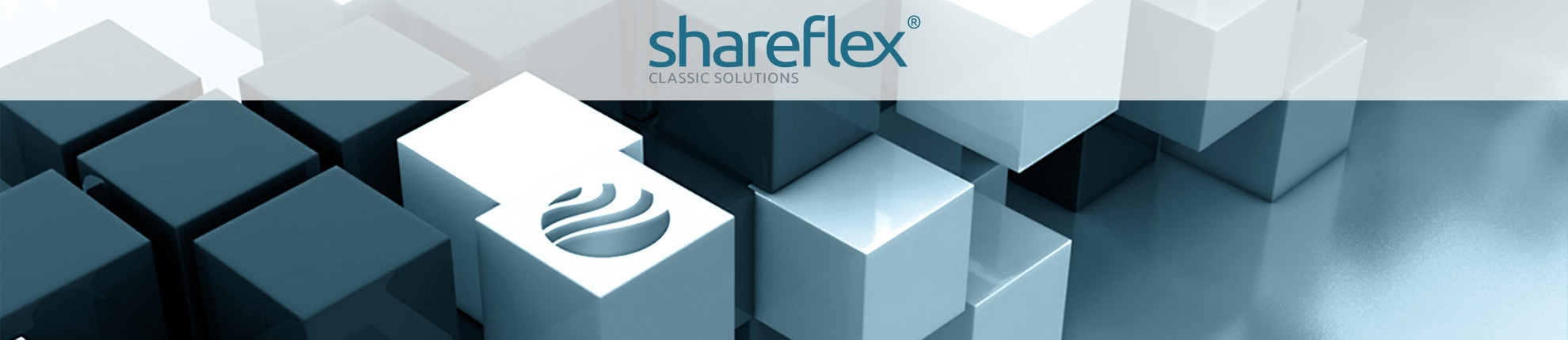 Cubes and the Portal Systems Globe representing the brand Shareflex